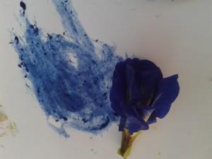 pigment_bleu