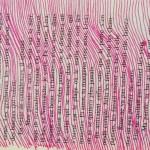 lignes roses sur livre de poche Elize