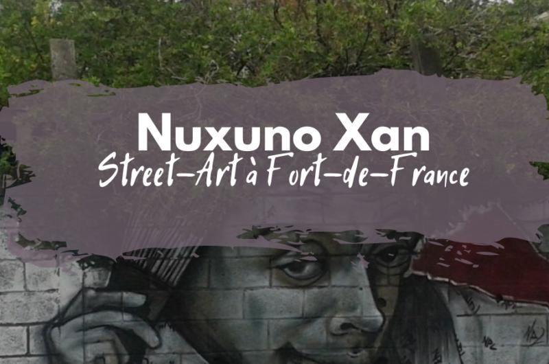 nuxuno xan street art fort-de-france