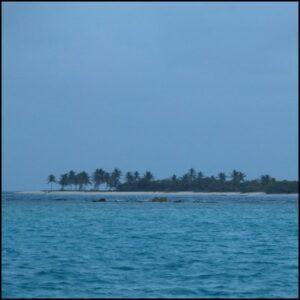 ile palmier mer bleu