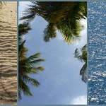 inspiration bleu plage sable mer ciel palmier