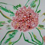 ixoras fleurs tropicales dessin rouge