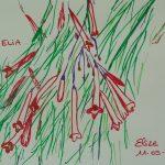 russelia fleurs tropicales dessin rouge goutte sang
