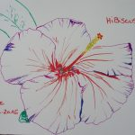 hibiscus fleurs tropicales dessin violet