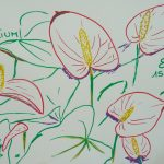 anthurium fleurs tropicales dessin rouge