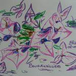 bougainvillier bougainvillée fleurs tropicales dessin violet