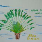 arbre du voyageur fleurs tropicales dessin vert