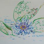 nenuphar fleurs tropicales dessin bleu