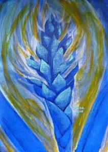 alpinia bleu fleur tropicale