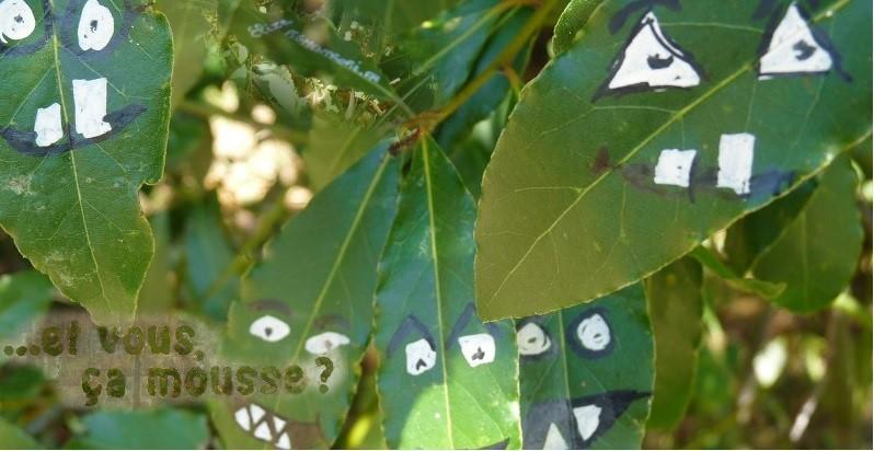 Comment inventer du street art vert, végétal et légal