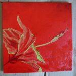 hibiscus rouge fleur tropicale