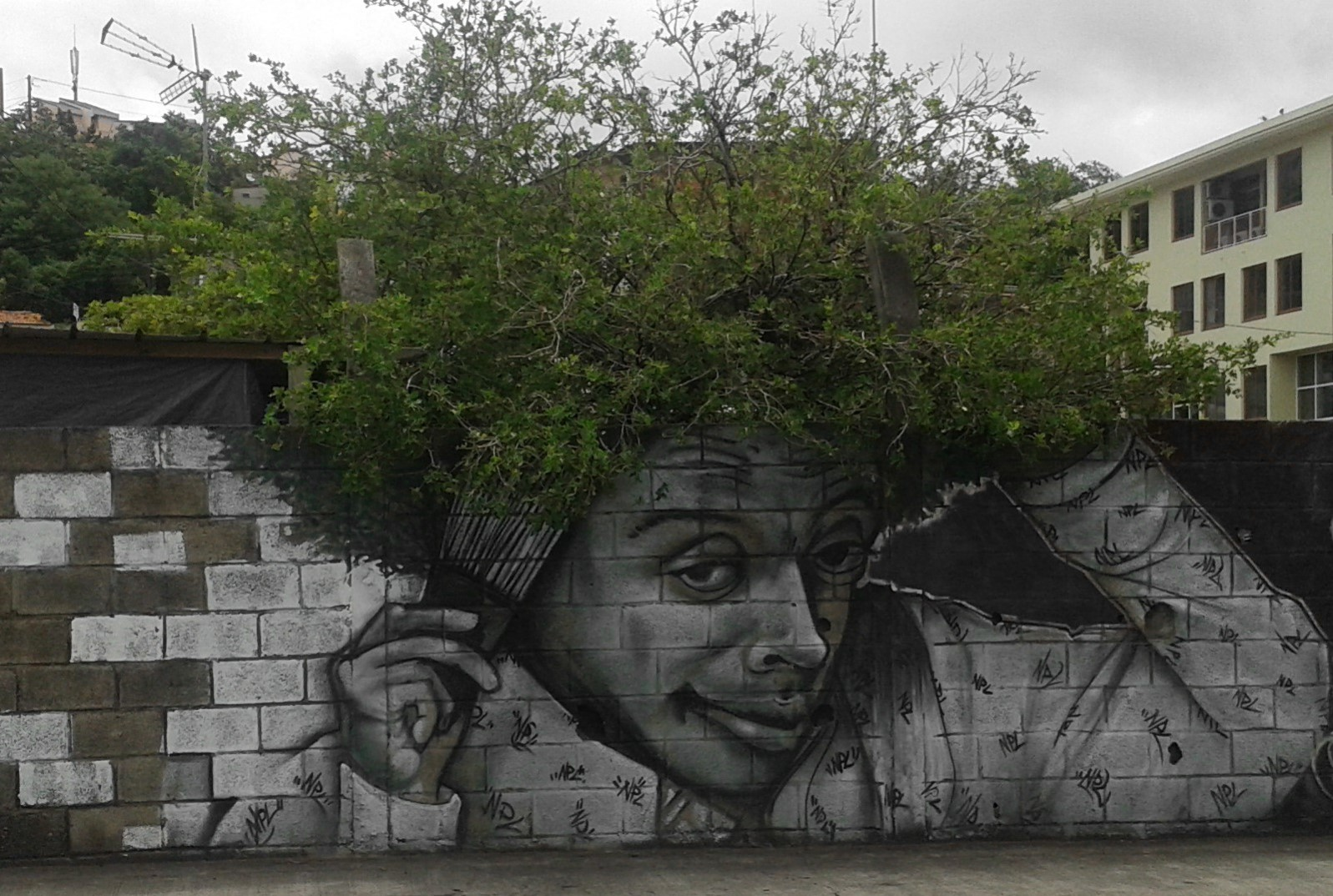 nuxuno xan spike lee cheveux arbre martinique street art