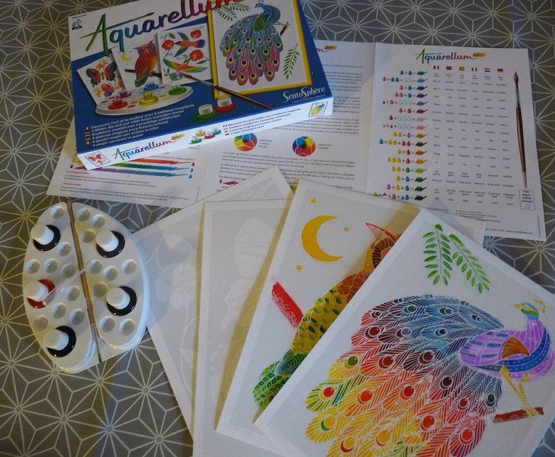Aquarellum paon peinture enfant couleur aquarelle kit cadeau