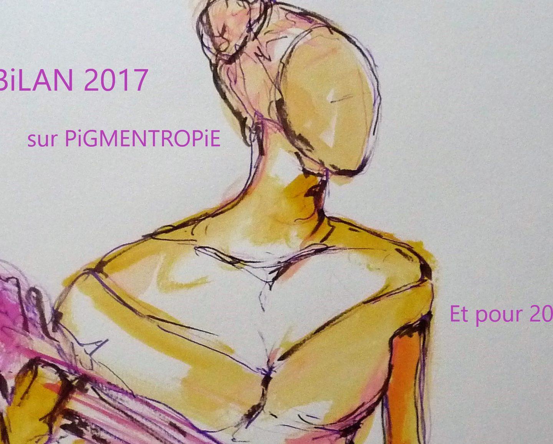 Bilan 2017 sur PiGMENTROPIE