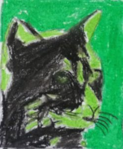 vert chat pop art noir