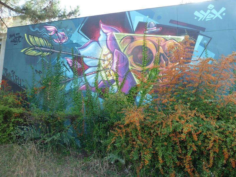 shake well dyox dyoxine pessac street art
